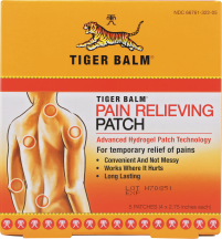 Pain Relieving Patch product image.