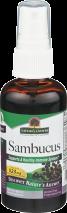 Sambucus Spray  product image.