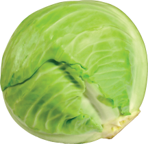 Organic Produce Cabbage PLU 94069 product image.