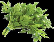Organic Produce Parsley PLU 94901 product image.