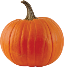 All Winter Squash (Including Pie Pumpkins) product image.